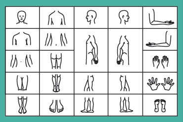 Image Set example for Total Body Photography